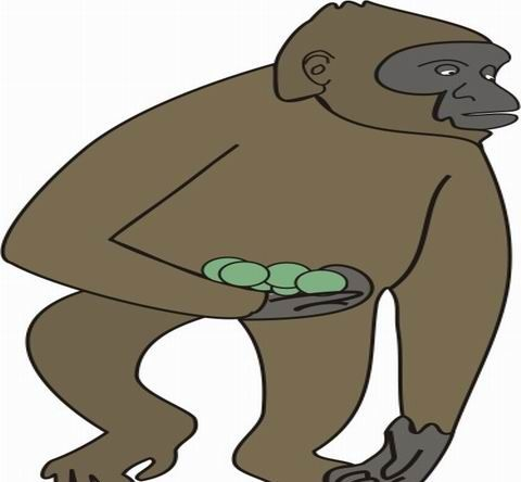 Ape Coloring Pages