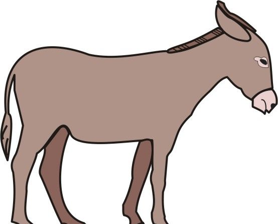 Donkey Coloring Pages For Kids To Color And Print