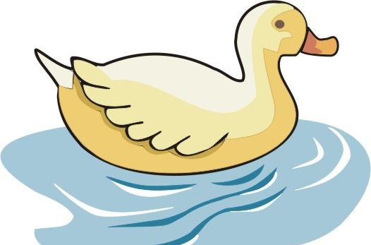 Swimming Duck Coloring Pages