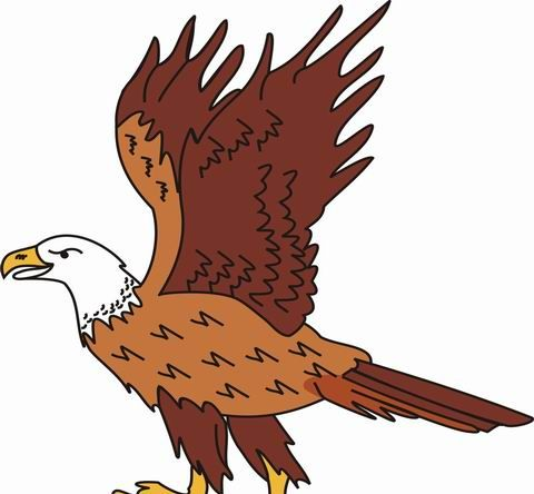 Eagle coloring pages for kids to color and print for Eagle coloring pages printable