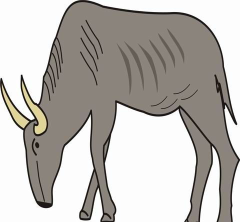 Gnu Coloring Pages