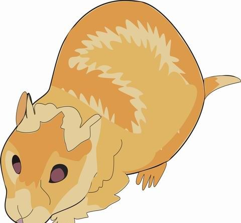 hamster coloring pages for kids to color and print