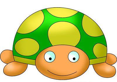 how to draw tortoise